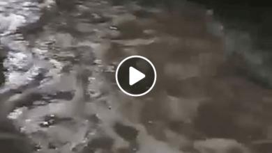 Photo of Vídeo: Lluvia deja inundadas colonias de San Luis Potosí