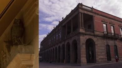 Photo of El misterio de los búhos del Edificio Ipiña