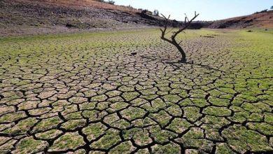 Photo of San Luis Potosí sólo tiene 75 días de agua según la CEA