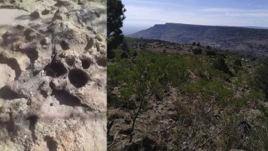 Photo of Encuentran huellas de puma en la Cañada del Lobo, por donde quieren fraccionar