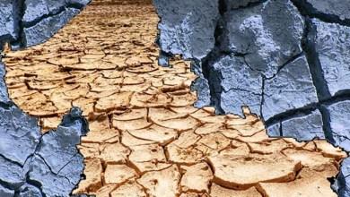 Photo of San Luis Potosí sufrirá sequía extrema en el 2020