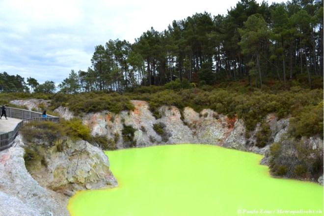 Waiotapu_Geothermal_Wonderland_Metropolischt_5