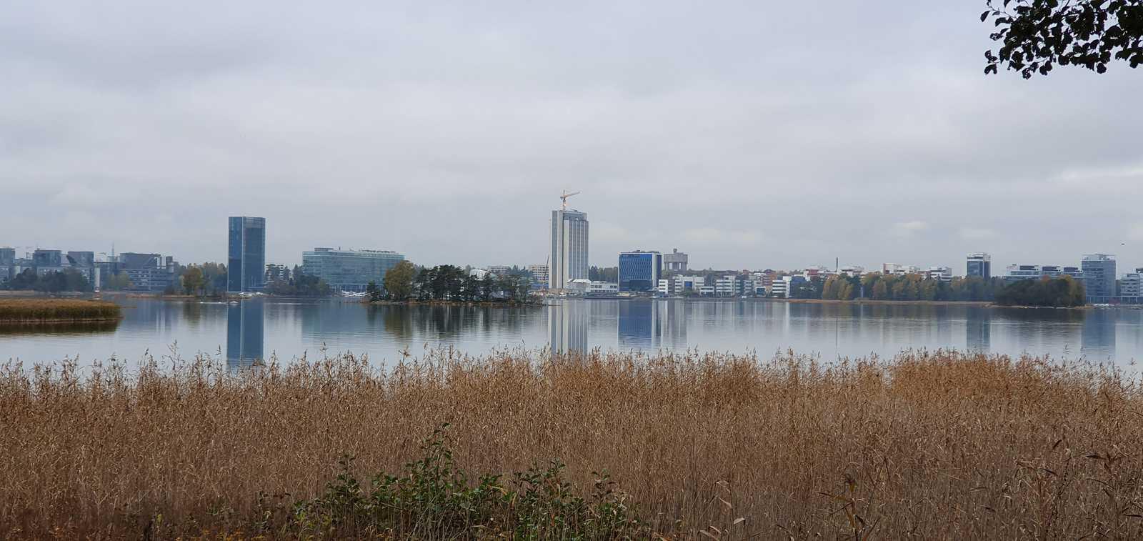 Opastetut kaupunkiluontoretket Helsingissä ja Espoossa