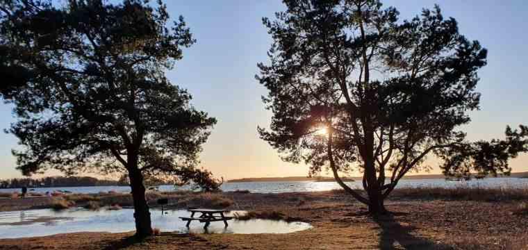Aurinko paistaa merenrannalla Kallahdenniemessä.
