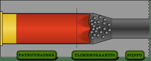 Haulikon pesän rakenne