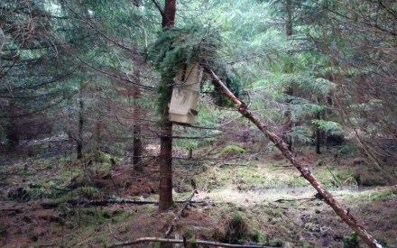 Rautapönttö puussa