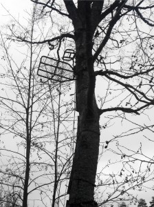 Puupassi ja tikkaat