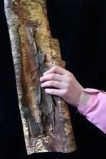 Lea Kömi, Maailmankylä metsä käsikuvat-84