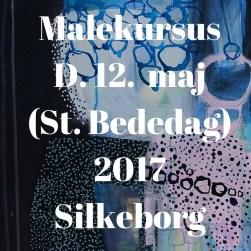 MalekursusD. 10. juni 2017Silkeborg(3)