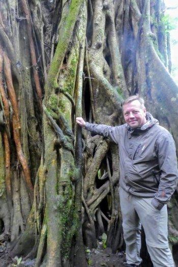 monteverde costa rica kvælerfigen