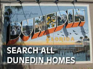 DunedinHomes