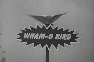 How fun it was! Best memories of the childhood! G8ksU 1498762778 8893 list items whamo bird
