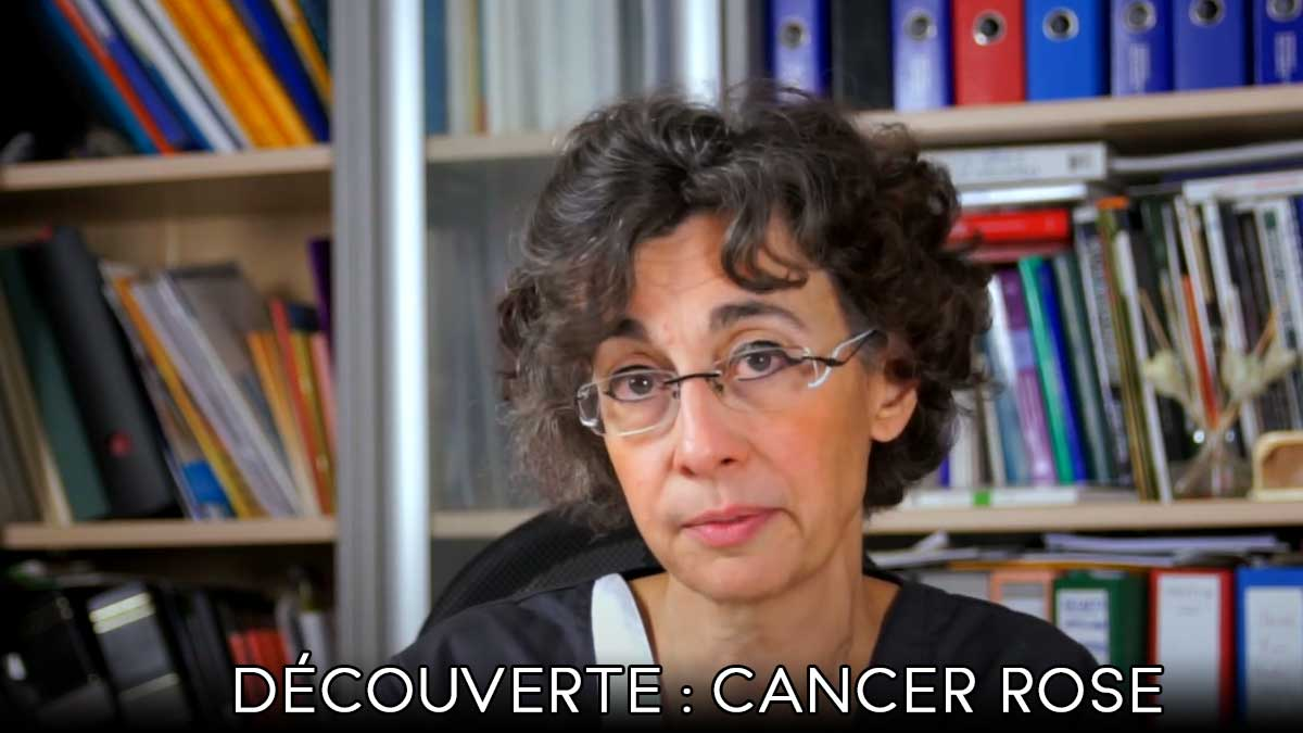 Decouverte Cancer Rose