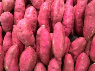 Foto da matéria Tempo de cozimento: batata doce