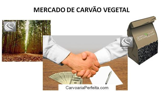 mercado de carvão vegetal