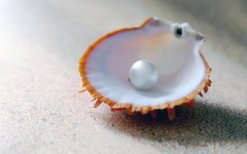 Trabajar recogiendo perlas en Australia
