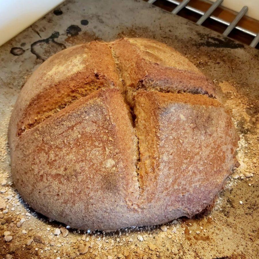 brood op basis van speltmeel en het zuurdesem wat ik voed. het brood is mooi bruin, erg hoog gerezen en er zitten inkepingen in de vorm van een plusteken in