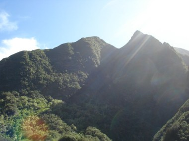 Iao Valley (8)
