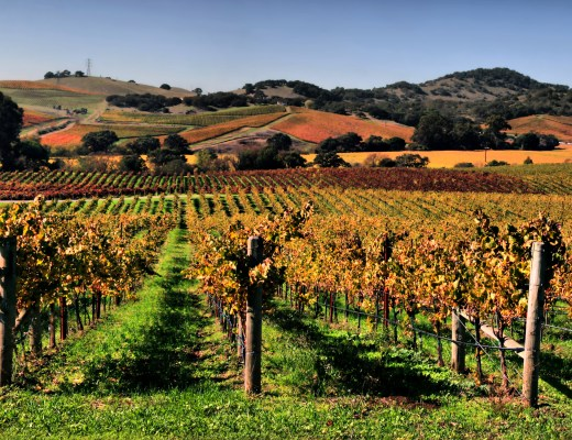 your guide to napa wineries in napa you can't miss