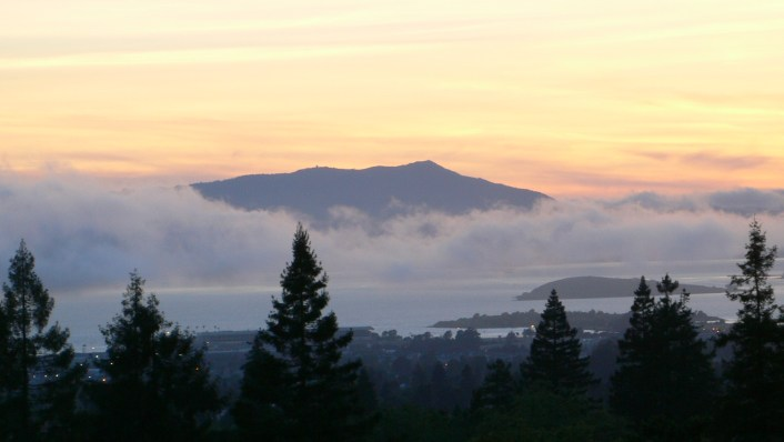 mount tam best bay area hikes