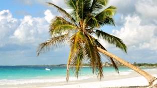 paraiso-beach-tulum
