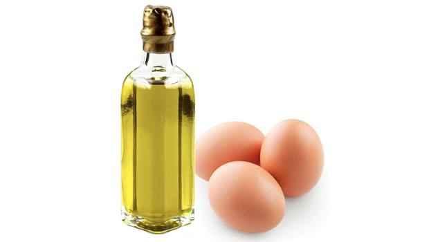 يعد استخدام زيت اللوز والبيض طريقة منزلية طبيعية لعلاج الشعر الجاف والمجعد وزيادة تغذية الشعر
