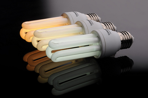 Three energy saving light bulbs by Anton Fomkin