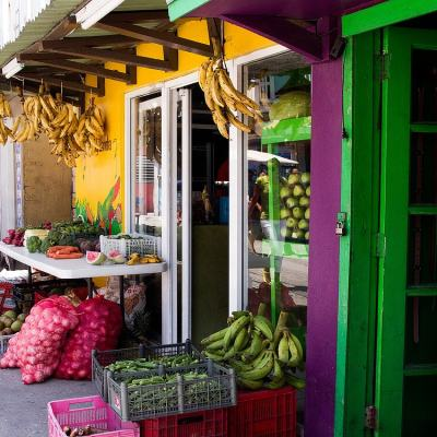 La Isla Bonita: A Tour of San Pedro Town
