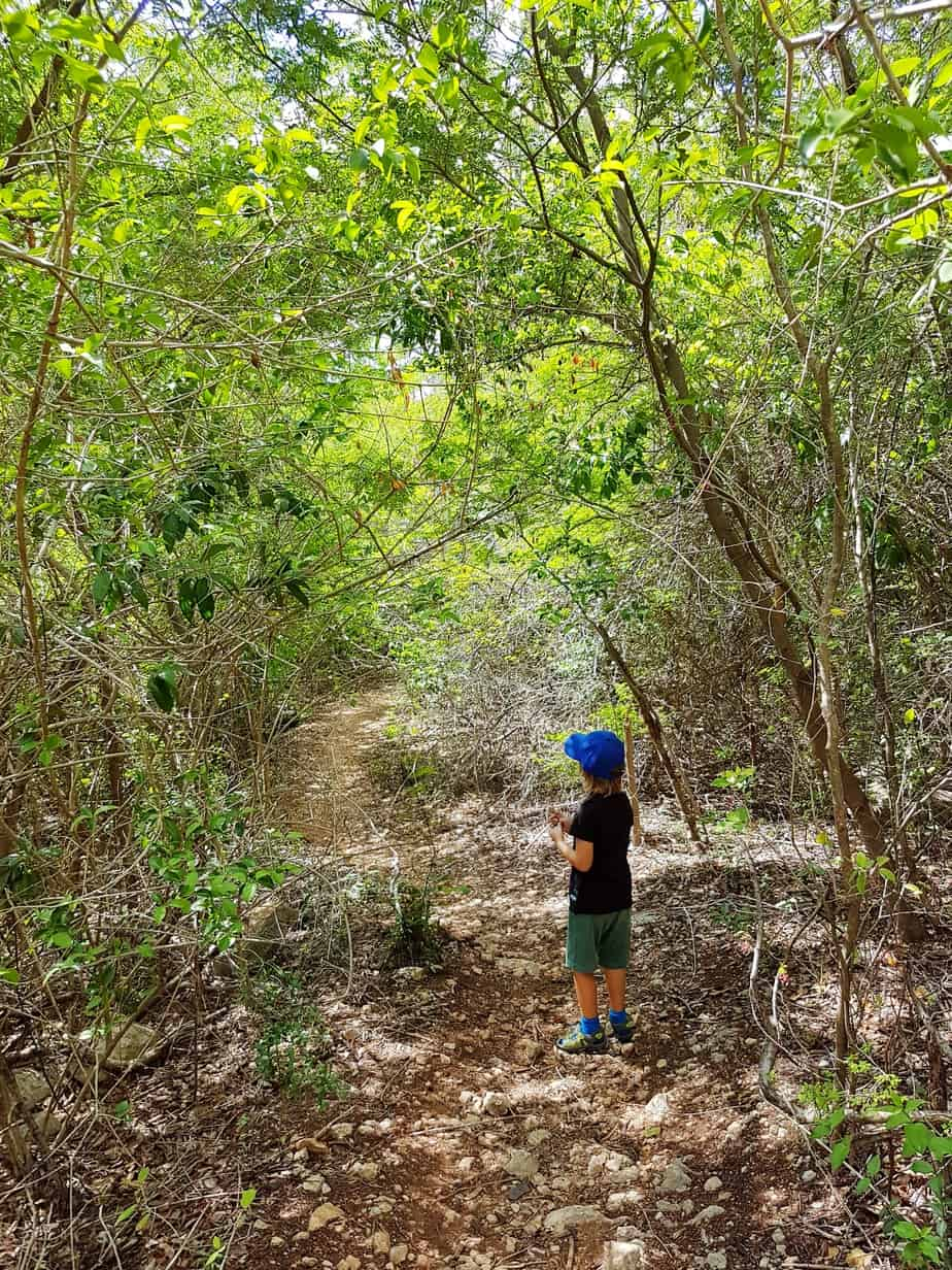 Obtaining Family Temporary Residency In Mexico