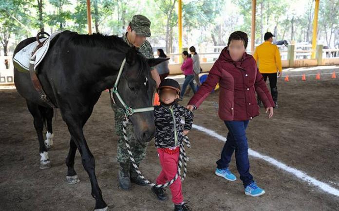 Free equine therapy services resume in Lerdo Durango