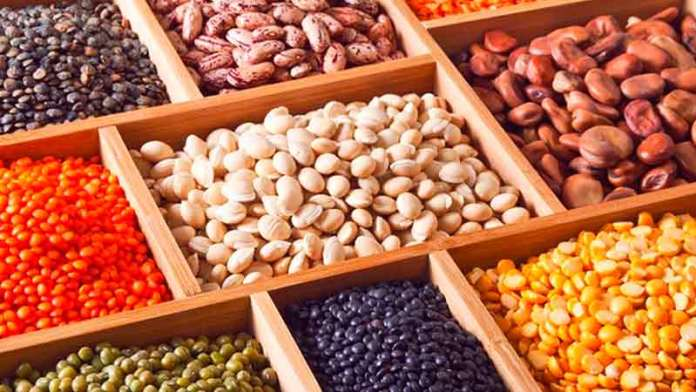 Alistan importación de frijol por caída de producción nacional