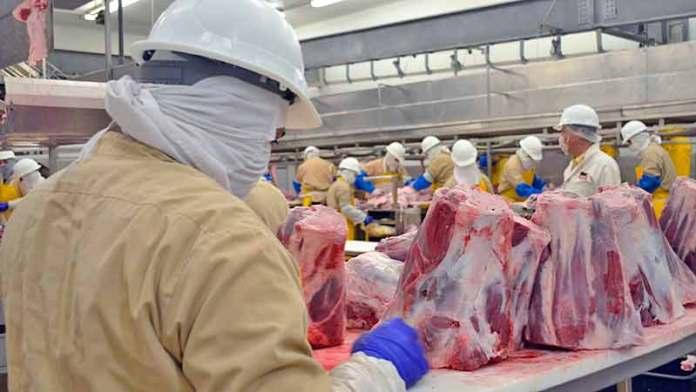 Sube exportación de carne a EUA