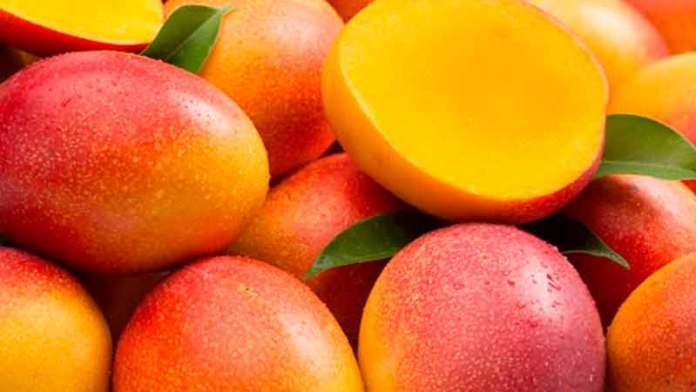 Importaciones de mango de Estados Unidos caerían en septiembre