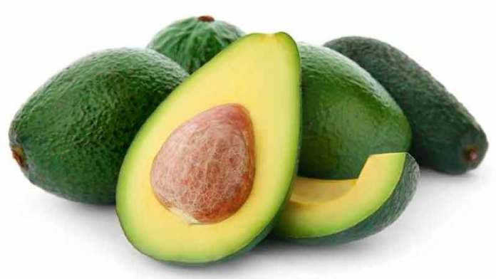 Mexican Avocado Exports This Season Set for 6% Growth