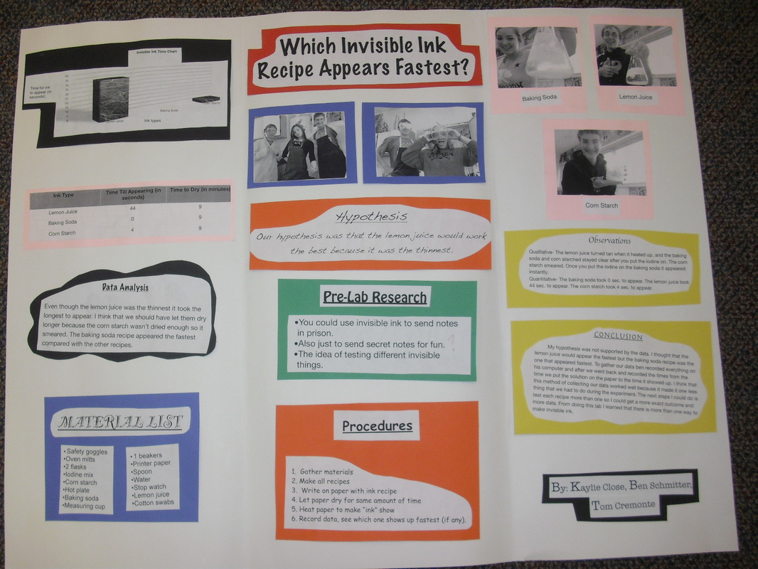 Gallery Of Student Work