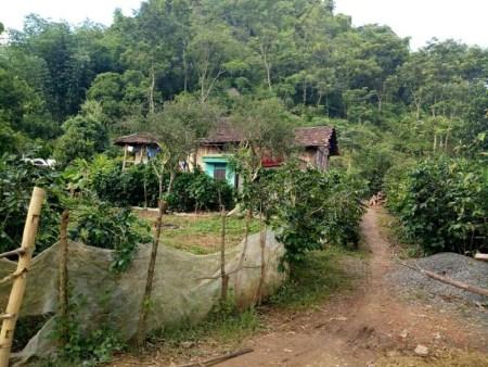 Ngôi nhà của chị Biên và anh Hoàn