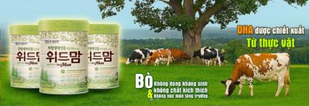 sữa with mom Hàn Quốc có tốt không