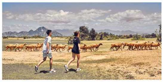 Phạm Bảo Trân và Danny đã chọn những địa danh đẹp của Việt Nam để chụp ảnh cưới