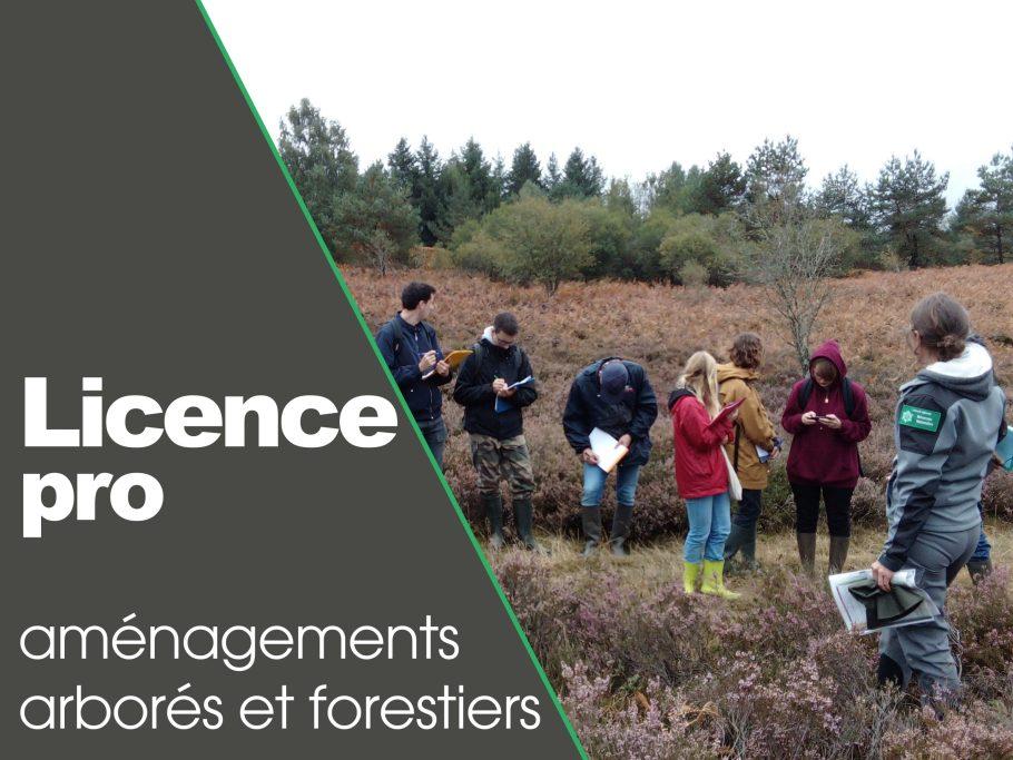 vignette formation licence pro meymac amenagements arbores et forestiers
