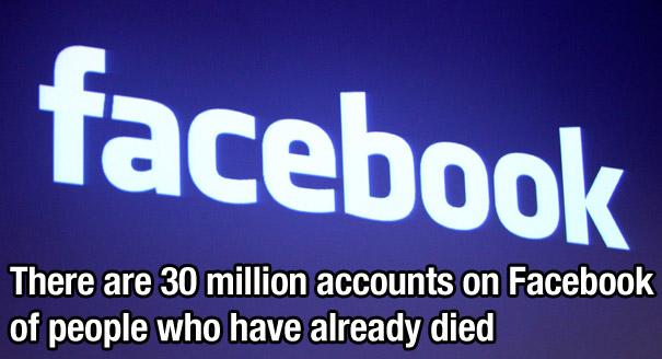 Facebook fact