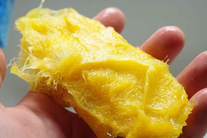 mango seeds.jpg