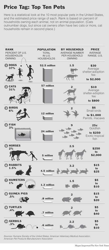 Pets.jpeg