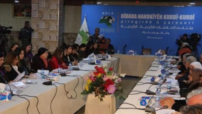 Ulusal birlik çalışmaları hızlandırılmalı   ZANA DENİZ