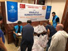 Distribución de corderos del Eid al Adha a más 60 familias de Sevilla