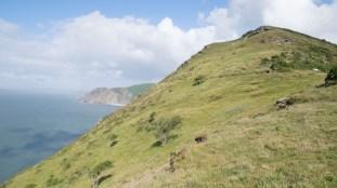 Valley of Rocks 3