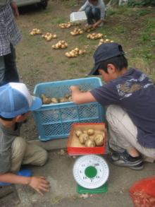 お菓子教室&食育コミュニティ キッチンスタジオ「横浜ミサリングファクトリー」-じゃがいも