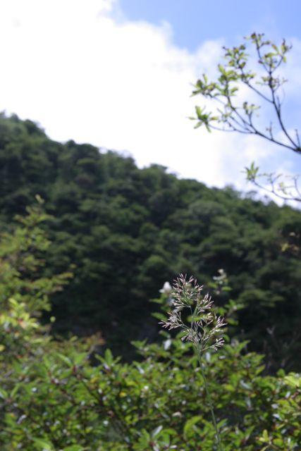 キッチンスタジオ◆横浜ミサリングファクトリー-箱根4