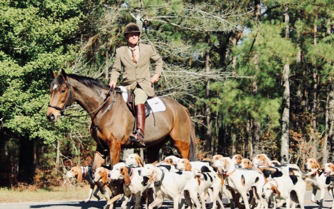 Moore County Hounds Credit Cameron Sadler