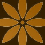 44 Orange Flower Apple Iphone 6 750x1334 Wallpapers Mobile Abyss