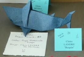 Requin d'Angel Morollon par Claire Landre